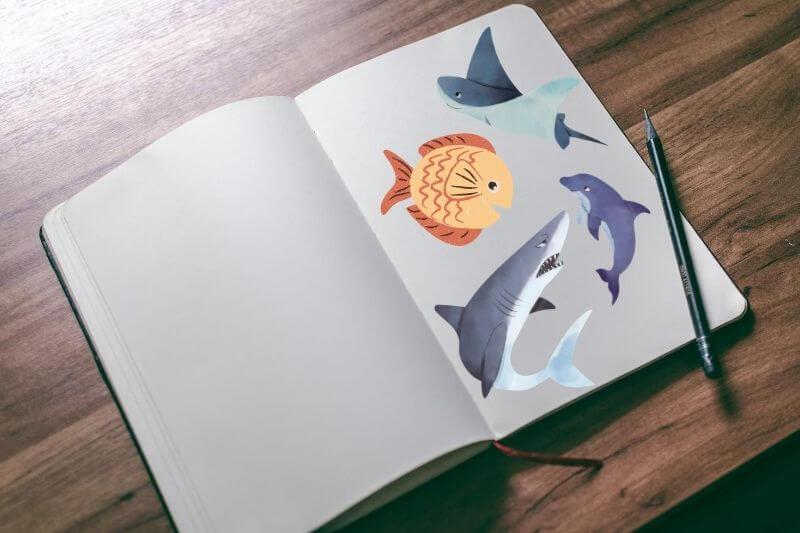 Libros con dibujos para colorear de animales marinos